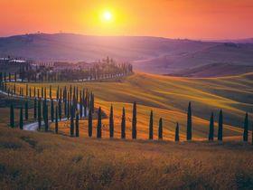 © Gaspar Janos - Shutterstock